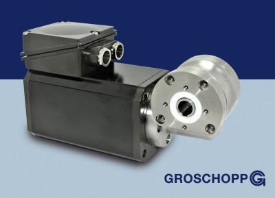 Induktionsmotor Sila mit Edelstahlgetriebe Groschopp